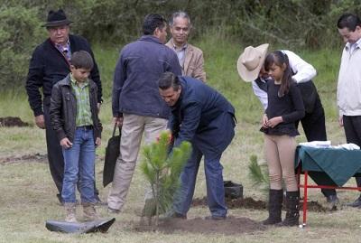 Inicia campaña de reforestación 2015: el cinismo de Peña Nieto no se hace esperar