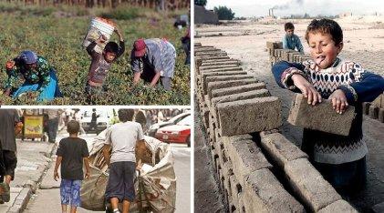 """Trabajo infantil: la """"falla"""" de un sistema depredador que se enriquece mucho con ella"""