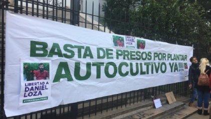 La Plata: lograron la liberación de cultivador de cannabis solidario con personas enfermas