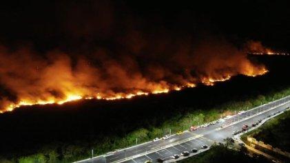 Más de 54 mil hectáreas consumidas por incendios forestales en México