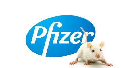 "Ratas de laboratorio: farmacéutica esconde avances sobre Alzheimer porque dan ""poca ganancia"""