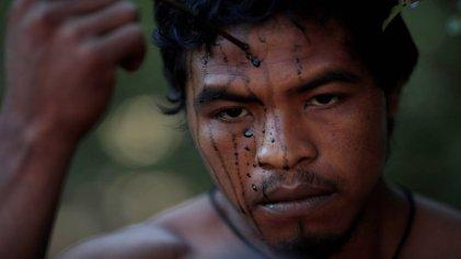 Talamontes brasileños asesinan a Paulo Paulino, indígena guardián de la Amazonia