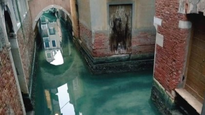 Los canales de Venecia se volvieron cristalinos por la paralización del turismo