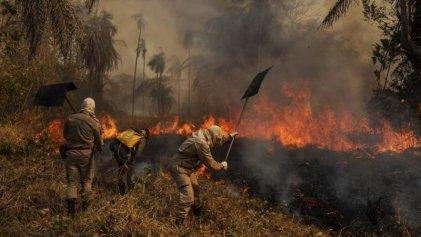 Devastadores incendios en Pantanal de Brasil, el humedal más grande del planeta