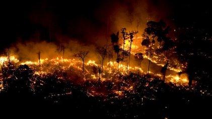 Deforestación en Brasil: denuncian más de 1000 focos de incendio en Minas Gerais en solo cuatro días
