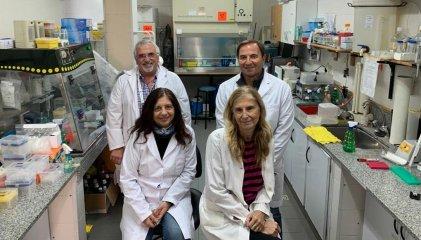 UBA: investigan coronavirus en mascotas y animales silvestres