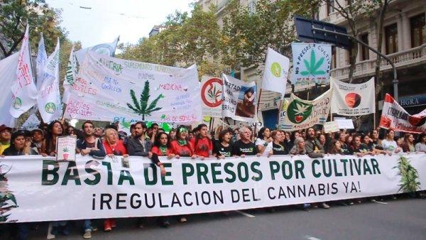 El reclamo por la legalización de la marihuana volvió a llegar hasta la plaza del Congreso