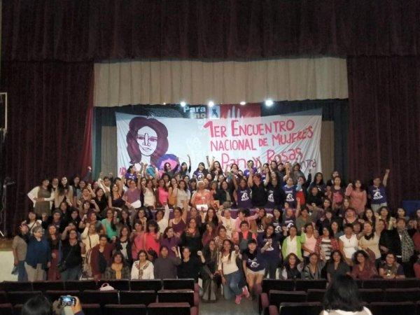 Encuentro Nacional de Pan y Rosas se suma a la marcha del 25/11